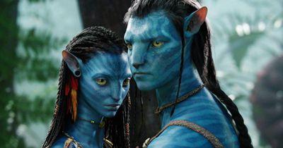 """""""Avatar"""": Das machen die Filmstars heute"""