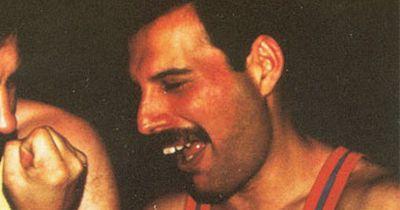 Hier seht ihr seltene Fotos von Freddy Mercury und seinem letzten Freund