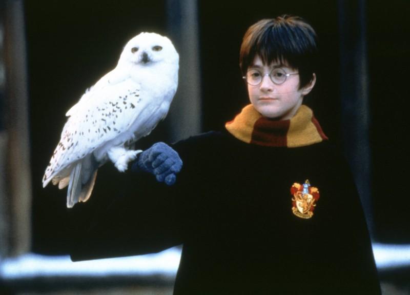 """Daniel Radcliffe ist den meisten durch seine frühe Rolle bei """"Harry Potter"""" bekannt."""