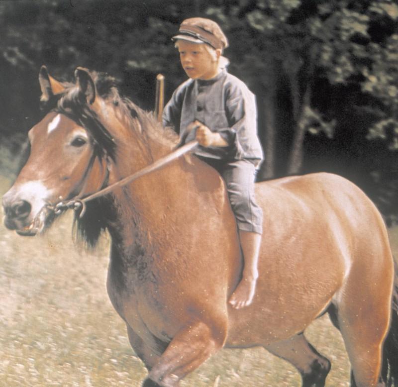 Michel aus Lönneberga auf seinem Pferd.