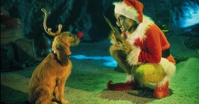 10 Filme, mit denen du in Weihnachtsstimmung kommst