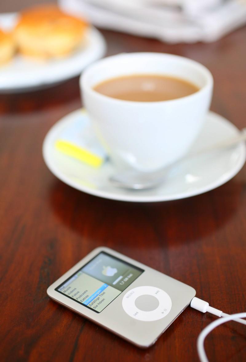 Der iPod Nano war 2010 ein essenzielles Gadget.