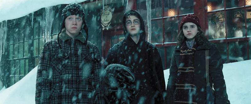 """Einen Charakter aus der """"Harry Potter""""-Reihe gibt es wirklich, wie du in unserem Quiz erfahren wirst."""