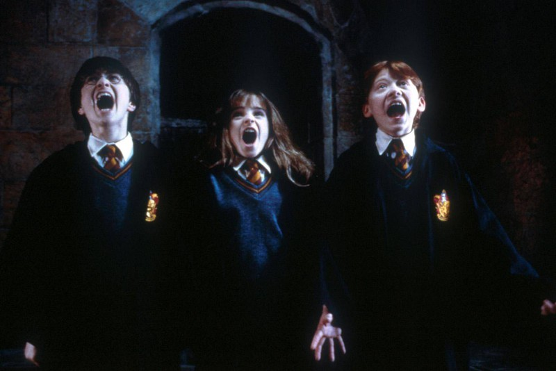 Wer sich intensiv mit Harry Potter auseinandersetzt, kann das Quiz richtig beantworten.