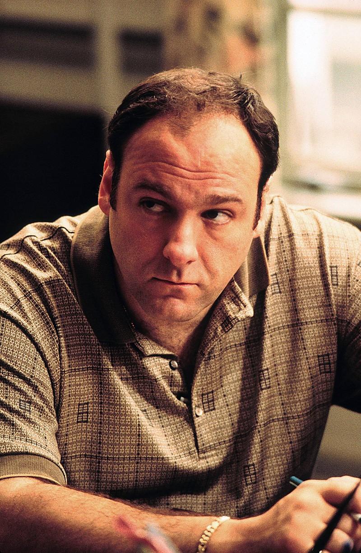 Die Hauptfigur der Geschichte ist Tony Soprano.