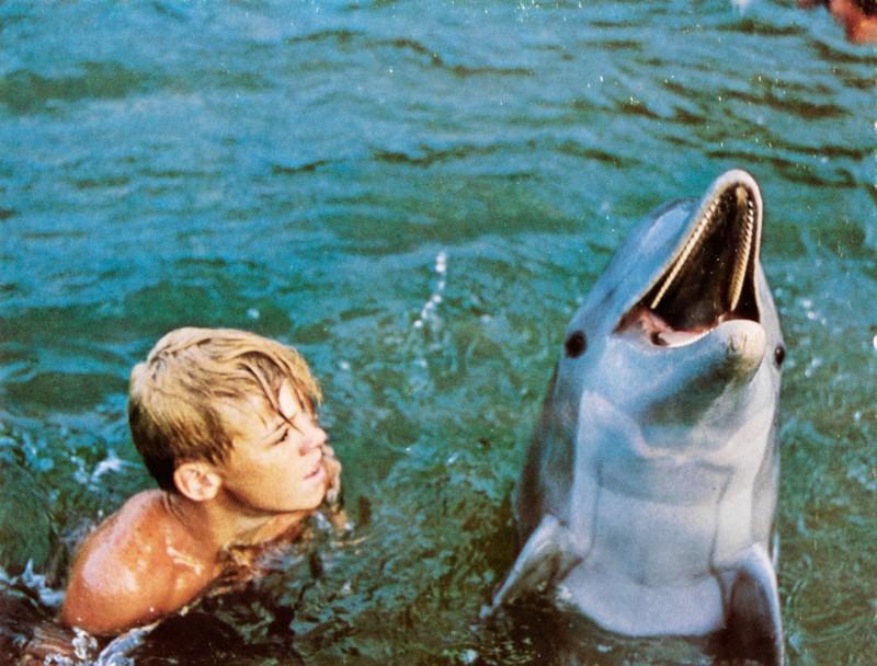 Sandy und Flipper erlebten viele Abenteuer miteinander